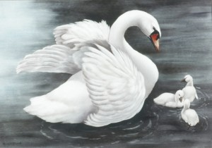 the_swan